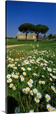 Italy, Campania, Paestum, Tempio di Cerere