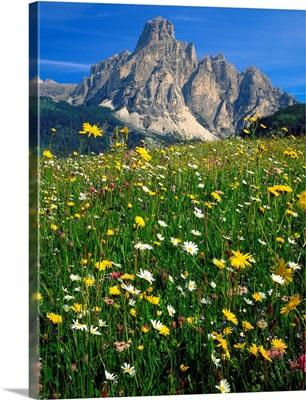 Italy, Dolomites, Alta Badia, Sassongher