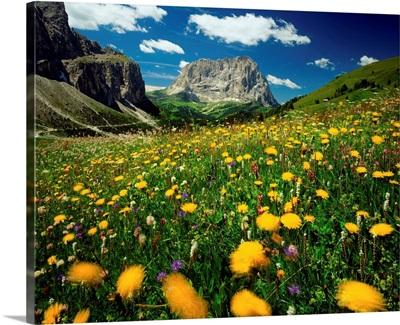 Italy, Dolomites, Passo Gardena (Grodner Joch) towards Sassolungo (Langkofel)