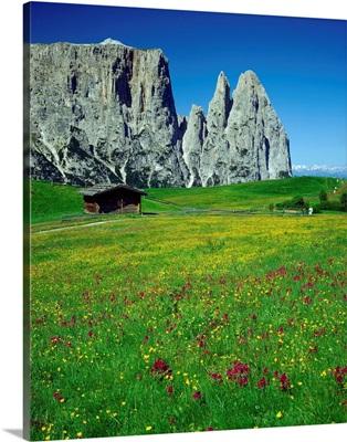 Italy, Dolomites, Swiss Alps (Seiser Alm), view towards Sciliar (Schlern)