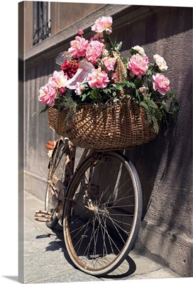 Italy, Emilia-Romagna, Parma, Bicycle with flower basket