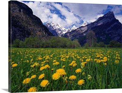 Italy, Friuli-Venezia Giulia, Duranno and Cima dei Preti mountains