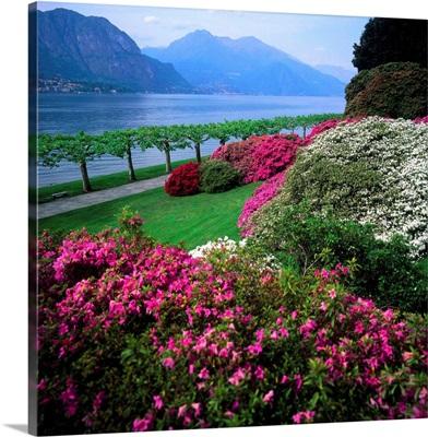 Italy, Lake Como, Villa Melzi d'Eril, park