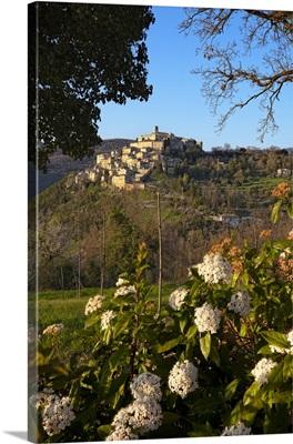 Italy, Latium, Mediterranean area, Rieti district, Labro