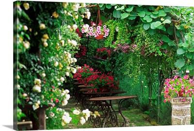 Italy, Latium, Ronciglione, Fendi private garden, Surfinie