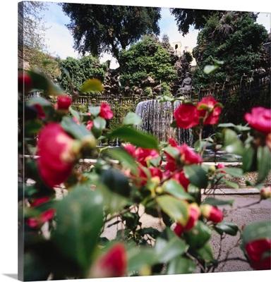 Italy, Latium, Tivoli, villa d'Este, park, Ovato fountain