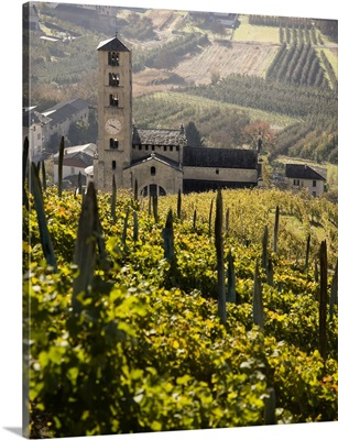 Italy, Lombardy, Bianzone, San Siro church and vineyards