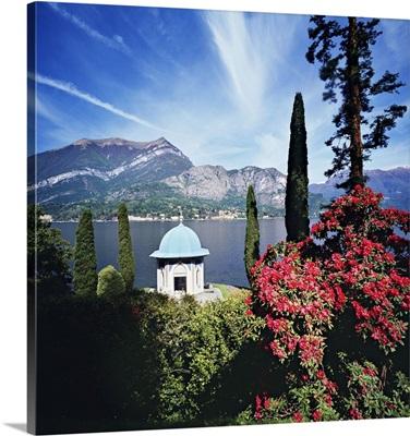Italy, Lombardy, Como Lake, Bellagio, Villa Melzi, rhododendron in the park