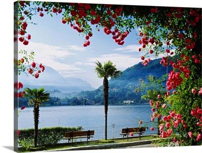 Italy, Lombardy, Como Lake, View of the lake near Tremezzo town