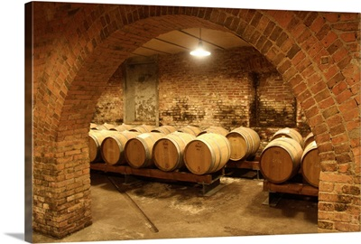 Italy, Lombardy, Oltrepo Pavese, Casteggio, Frecciarossa wine cellar
