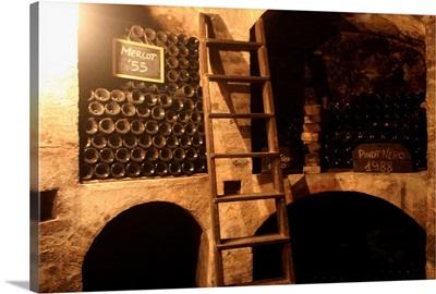 Italy, Lombardy, Oltrepo Pavese, Torrazza Coste, Montelio wine cellar