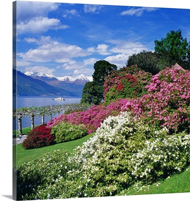 Italy, Lombardy, Villa Melzi, park with rhododendron on lakeside