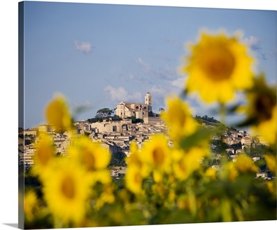 Italy, Marches, Fermo district, Fermo, Landscape with sunflowers and town