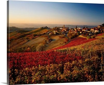 Italy, Piedmont, Langhe, Tresio village and vineyards