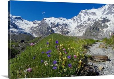 Italy, Piedmont, Valle Anzasca, Macugnaga, Trekking under Monte Rosa