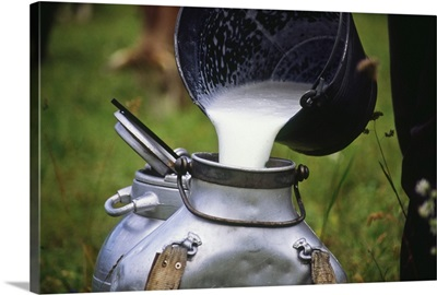 Italy, Piedmont, Valsesia, Val d'Otro, Plateau near Alagna Valsesia village, milk
