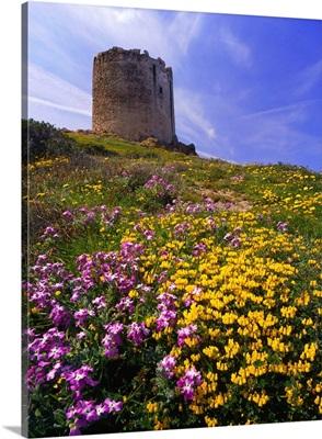 Italy, Sardinia, Isola Rossa, Torre Aragonese