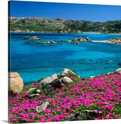 Italy, Sardinia, Maddalena Island, coast