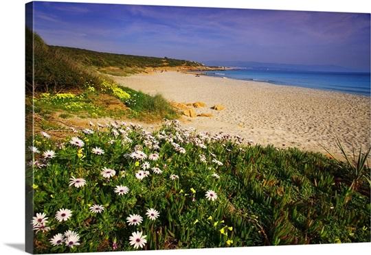 Italy Sardinia Spiaggia Delle Arde Beach Near Alghero Town