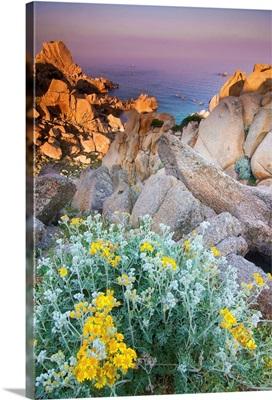 Italy, Sardinia, Typical granite rock formations of Gallura