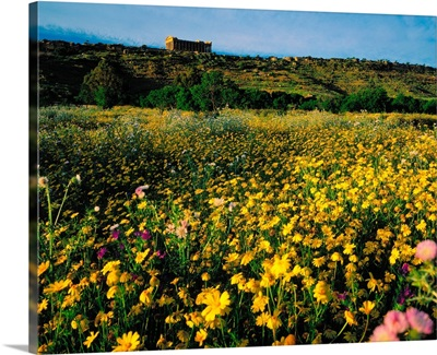 Italy, Sicily, Agrigento, Valley of Temples, Temple of Concordia