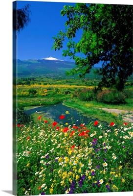 Italy, Sicily, Mount Etna, Mount Etna, Alcantara river