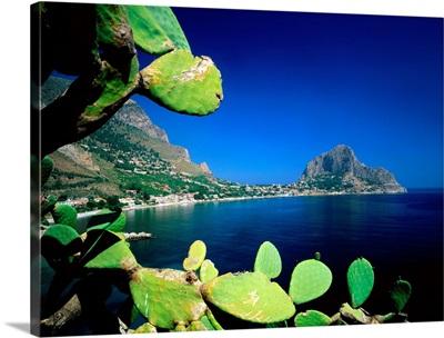 Italy, Sicily, Palermo, Zafferano Cape