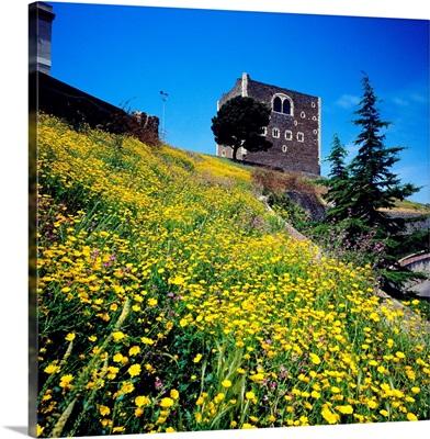 Italy, Sicily, Paterno, Norman Castle near Paterno
