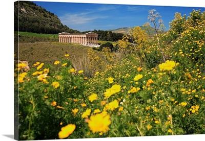 Italy, Sicily, Segesta, Segesta archaeological area