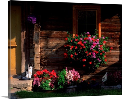 Italy, South Tyrol, Val Casies, (Gsieser Tal), typical house entrance