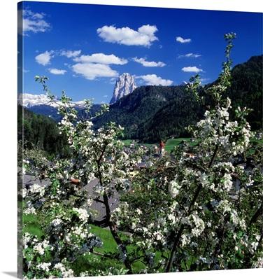 Italy, South Tyrol, View towards Ortisei and Sassolungo mountain