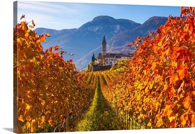 Italy, Trentino-Alto Adige, Alps, South Tyrol, Cortaccia, Church And Vineyards In Autumn