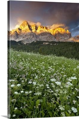 Italy, Trentino-Alto Adige, Dolomites, Alta Badia, San Cassiano, Alpine Meadows