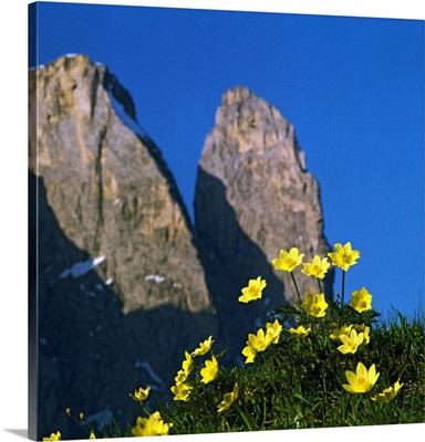Italy, Trentino-Alto Adige, South Tyrol, Alps, Dolomites, Gardena Valley