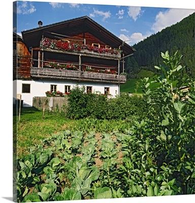 Italy, Trentino-Alto Adige, South Tyrol, Alps, Dolomites, Pusteria Valley, Farmhouse