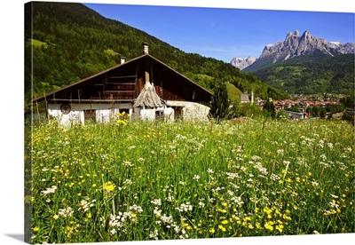 Italy, Trentino-Alto Adige, Trentino, Valle del Primiero, Fiera di Primiero