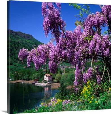 Italy, Trentino, Lago di Caldonazzo, San Cristoforo