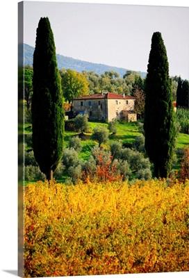 Italy, Tuscany