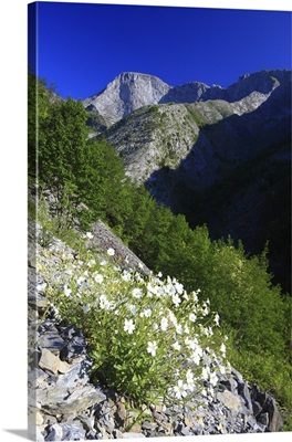 Italy, Tuscany, Apuan Alps, Turrite Secca Valley