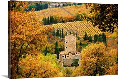 Italy, Tuscany, Chianti, Castellina in Chianti, Lanscape close to Piazza village