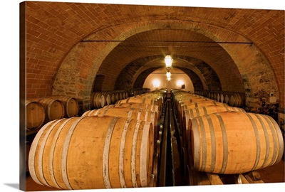Italy, Tuscany, Chianti, Estate of Castello d'Albola, cellar