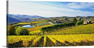 Italy, Tuscany, Chianti, Panzano in Chianti, Landscape close to the village