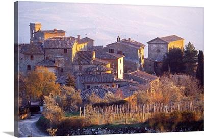 Italy, Tuscany, Chianti, Radda in Chianti, Volpaia locality