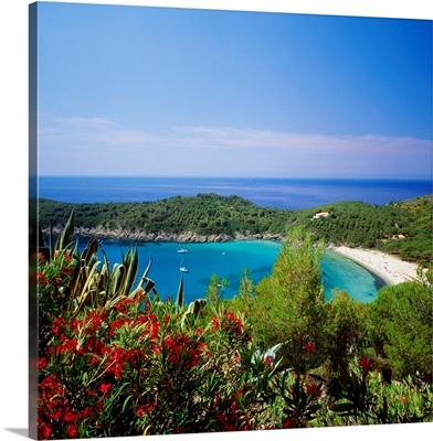 Italy, Tuscany, Elba, Fetovaia beach