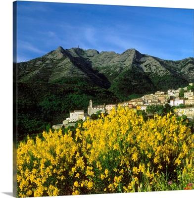Italy, Tuscany, Elba, view towards Monte Capanne