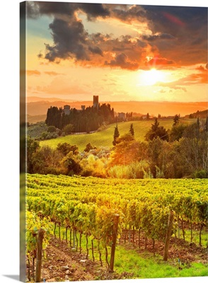 Italy, Tuscany, Firenze District, Tavarnelle Val Di Pesa, Badia A Passignano, Sunset