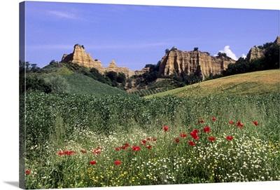Italy, Tuscany, Mediterranean area, Arezzo district, Castelfranco di Sopra, Le Balze