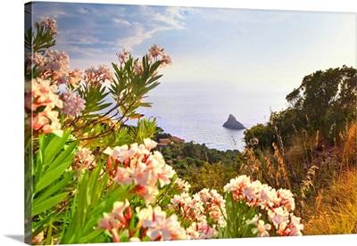 Italy, Tuscany, Monte Argentario, Cala del Bove near Porto Santo Stefano & Elba island