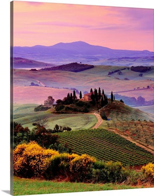 Italy, Tuscany, Orcia Valley, Landscape near San Quirico d'Orcia town