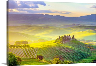 Italy, Tuscany, Orcia Valley, Tuscan Landscape Near San Quirico D Orcia At Sunrise